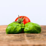 Cherry tomato and basil leaves Stock Photo