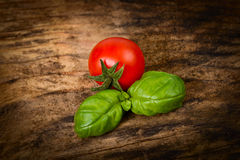 Cherry tomato and basil leaves Stock Photography