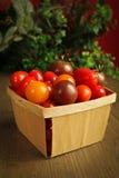 Cherry tomato Stock Image