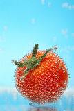 Cherry tomato in bubbles Stock Photos