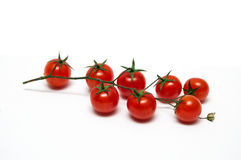 Cherry tomato. Isolated on white background stock photography