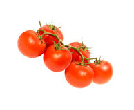 Cherry tomato. Isolated on a white background Stock Photography