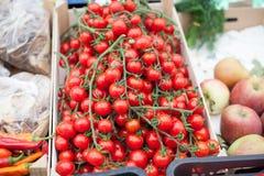 Cherry tomato market Royalty Free Stock Photography