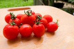 Cherry Tomato ny grupp på träskärbräda Arkivfoton