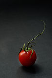 Cherry tomato over dark background Stock Photos