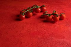 Cherry tomatoes on red background Royalty Free Stock Photography