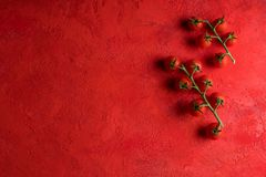Cherry tomatoes on red background Royalty Free Stock Images