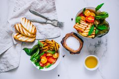 Cherry tomato salad with grilled haloumi cheese, with chard and stock images