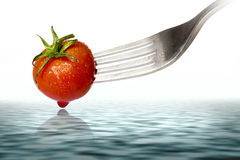 Cherry tomato spiked by a fork Stock Photos