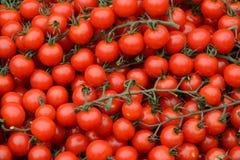 Cherry Tomato sur le marché photographie stock