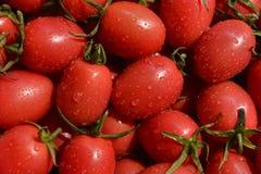 Cherry Tomato, tomates, fruta fresca, frutas, ensalada de fruta, Fotos de archivo libres de regalías
