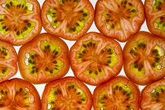 Cherry tomato wall Royalty Free Stock Images