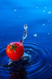 Cherry tomato in water2. A small cherry tomato falling in blue water with  interesting splash Royalty Free Stock Photo