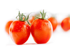 Cherry tomato on white backdrop with tomatoes stock photo