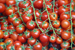 Cherry tomatoes. Close up of a box of cherry tomatoes for sale in a fresh vegetable market stock photography