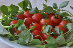 Cherry tomatoes. In a plate Stock Photo