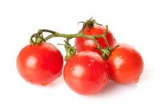 Cherry Tomatoes Stock Image