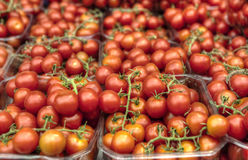 Cherry Tomatoes. In plastic containers in the market Stock Photos