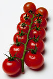 Cherry tomatoes. On the vine against white background Royalty Free Stock Images