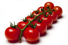 Free Cherry Tomatoes Royalty Free Stock Photos - 19969378