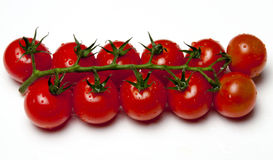 Cherry tomatoes. On the vine against white background Stock Image