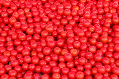 Cherry tomatoes. Bunch of shiny cherry tomatoes on a market place Stock Photos