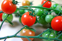 Free Cherry Tomatoes Royalty Free Stock Image - 21866596