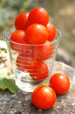 Cherry tomatoes. Food, gastronomy, cooking,cookery Stock Photography