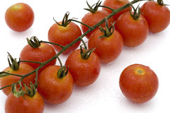Cherry Tomatoes. Close up of cherry tomatoes on a white background Stock Image