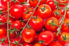 Cherry tomatoes. Isolated on white background Stock Photo