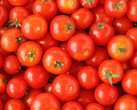 Cherry tomatoes. Organically grown red cherry tomatoes background Royalty Free Stock Photos