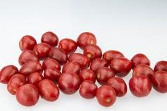 Cherry Tomatoes Arkivfoton