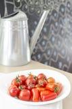 Cherry Tomatoes Fotos de archivo libres de regalías
