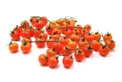 Cherry tomatoes. Isolated on white background stock photos