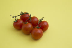 Cherry Tomatoes stockfotos