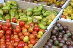 Cherry Tomatoes Photo stock