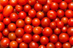 Cherry Tomatoes Stock Afbeelding