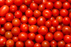 Cherry Tomatoes Stock Fotografie