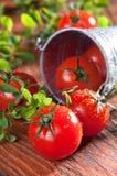 Cherry Tomatoes Image libre de droits