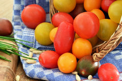 Cherry Tomatoes Image stock