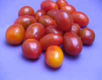 Cherry tomatoes. Several cherry tomatoes isolated in a blue background Stock Image