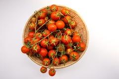 Cherry Tomatoes Fotografia Stock