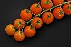 Cherry Tomatoes. Over black background royalty free stock photos