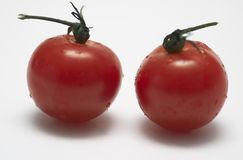 Cherry tomatoes. Couple of cherry tomatoes against white background royalty free stock photography