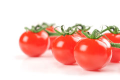 Cherry tomatoes. Branch closeup isolated on white background Stock Photos