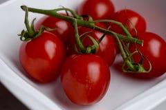 Cherry Tomatoes stockbilder