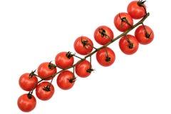 Cherry Tomatoes Photographie stock libre de droits