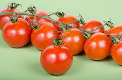 Cherry tomatoes attached on green vines Royalty Free Stock Photo
