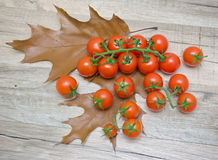 Cherry tomatoes on autumn leaves on a wooden table. Royalty Free Stock Photos