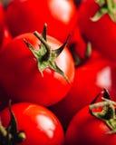 Cherry Tomatoes Backdrop Imagem de Stock Royalty Free